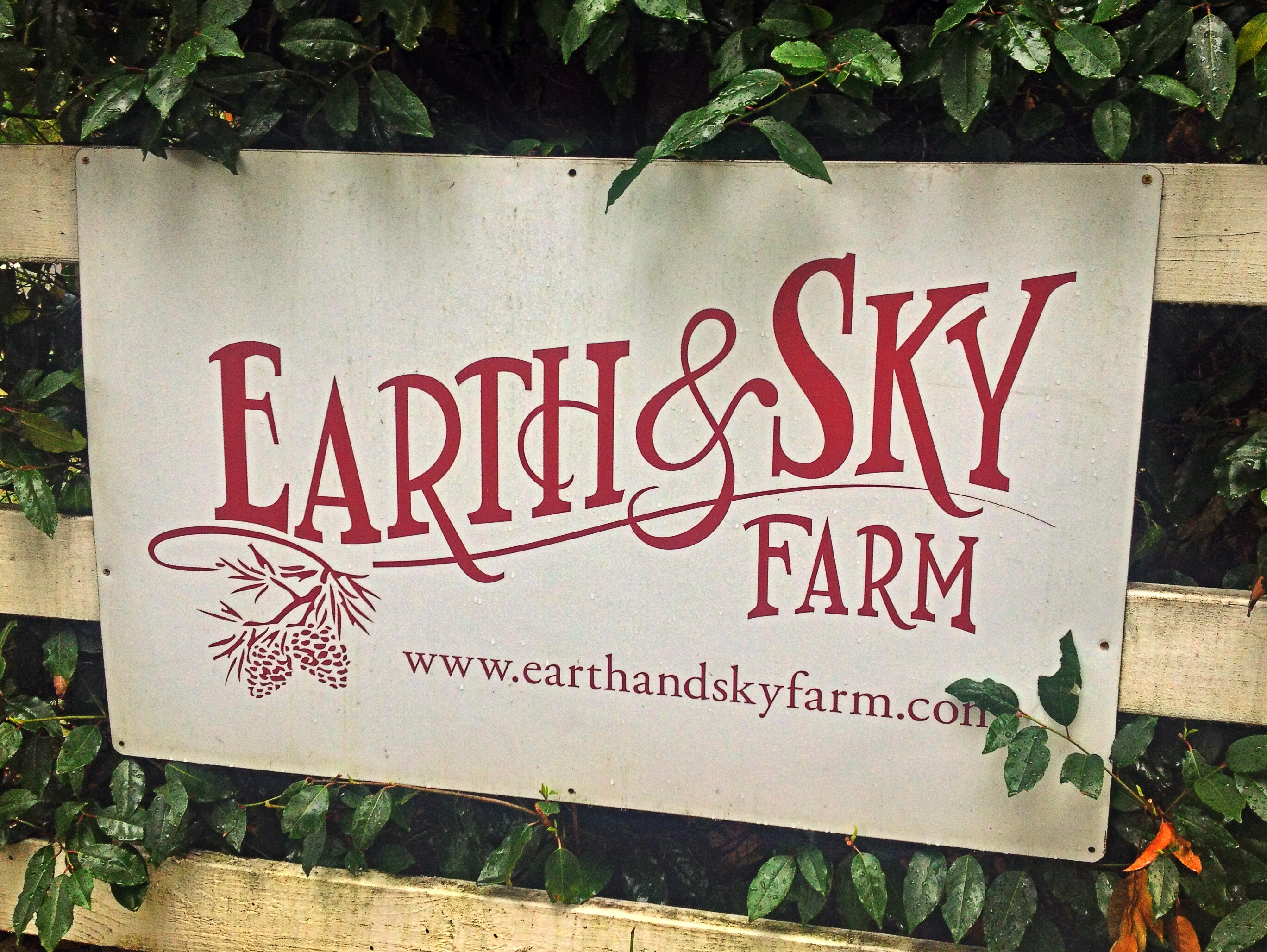 Earth and Sky Farm
